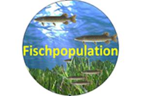 fischpopulation
