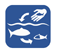 fish_stock_ohne_klein_cy