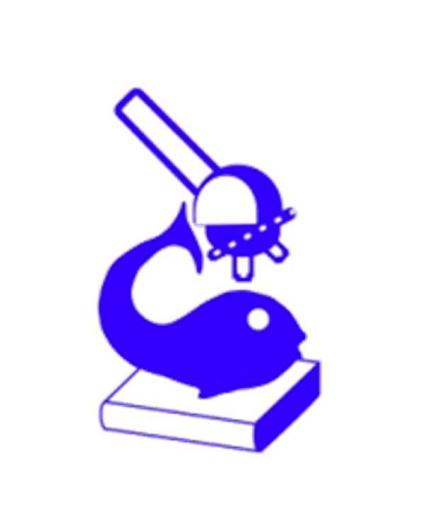 140926_ifb_logo